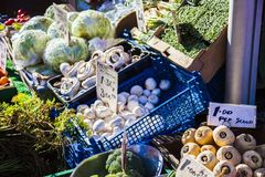 Verdure e mercato di frutta con la varie frutta e verdure fresche variopinte Fotografia Stock