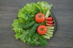 Verdure e verdi Fotografie Stock