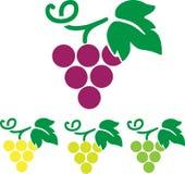 Verdure ed elementi di tema di frutti Immagine Stock