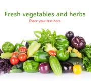Verdure ed erbe fresche del giardino degli agricoltori Immagine Stock