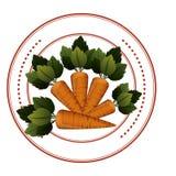 Verdure fresche delle carote royalty illustrazione gratis