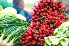 Verdure fresche ed organiche e frutta sul mercato degli agricoltori o sul mercato verde Raccolto di autunno e concetto coperto di fotografie stock