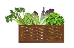 Verdure nel cestino Immagini Stock Libere da Diritti