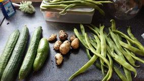 Verdure nostrane immagine stock