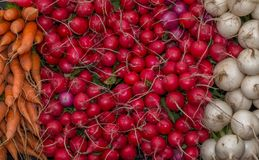 Verdure organiche Fotografia Stock Libera da Diritti
