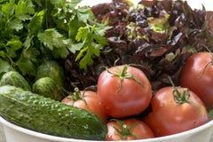 Verdure organiche appena raccolte fotografia stock