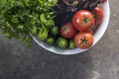 Verdure organiche appena raccolte fotografie stock libere da diritti