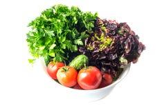 Verdure organiche appena raccolte fotografia stock libera da diritti