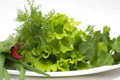 Verdure, pepper with side Royalty Free Stock Photo