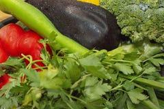 Verdure per lo zucchini dell'insalata della paprica di struttura del fondo, basilico, melanzana, broccoli fotografie stock