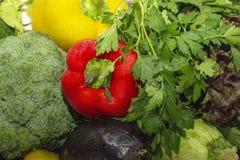 Verdure per lo zucchini dell'insalata della paprica di struttura del fondo, basilico, melanzana, broccoli immagini stock