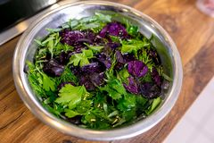 Verdure pour le décor de mélange imbibé dans une cuvette de l'eau Classe principale dans la cuisine Le processus de la cuisson Po photos libres de droits