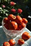 Verdure rosse del pomodoro Fotografie Stock Libere da Diritti
