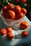 Verdure rosse del pomodoro Fotografie Stock