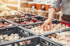 Verdure sane di compera e frutta dell'alimento delle donne asiatiche in supermercato immagini stock
