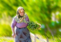 Verdure sane e localmente prodotte di trasporto della donna su un campo verde in Turchia fotografie stock