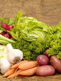 Verdure saporite fresche Immagini Stock Libere da Diritti