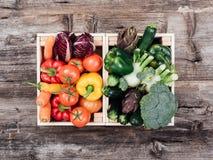 Verdure saporite fresche in casse di legno Fotografie Stock