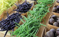 Verdure selezionate fresche su tela da imballaggio Fotografie Stock Libere da Diritti