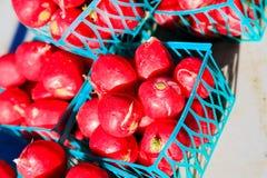 Verdure su esposizione al mercato del ` s dell'agricoltore dell'estate Fotografia Stock Libera da Diritti