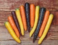 Verdure variopinte Carote arancio e porpora colorate organiche di giallo, di rosso, su un bordo di legno Immagine Stock