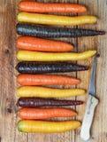 Verdure variopinte Carote arancio e porpora colorate organiche di giallo, di rosso, su un bordo di legno Fotografie Stock Libere da Diritti