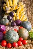 Verdure variopinte di autunno e frutta/raccolto Immagine Stock Libera da Diritti