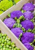 Verdure variopinte fresche sul contatore del deposito: cavolfiore porpora, cavoletti di Bruxelles immagini stock libere da diritti
