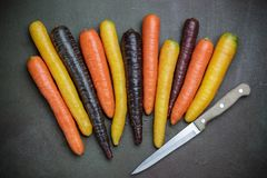 Verdure variopinte Le carote arancio e porpora colorate organiche di giallo, di rosso, sulla pietra scura sorgono Fotografie Stock