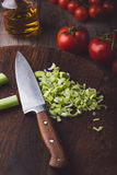 Verdure variopinte su un tagliere con il coltello Fotografia Stock Libera da Diritti