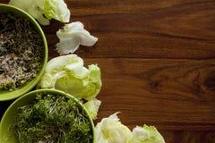 Verdure verdi sulla tavola Immagini Stock Libere da Diritti