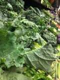 Verdure, verdure, verdure Immagine Stock Libera da Diritti