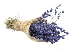 Vereinbaren des getrockneten Lavendels auf einem weißen Hintergrund stockfotografie