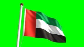 Vereinigte Arabische Emirate-Flagge stock footage