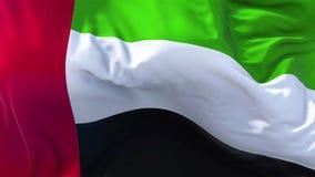 Vereinigte Arabische Emirate-Flagge in der Zeitlupe, die in der nahtlosen Schleife des Winds durchbrennt lizenzfreie abbildung
