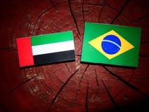 Vereinigte Arabische Emirate-Flagge mit brasilianischer Flagge auf einem Baumstumpf ist lizenzfreies stockfoto