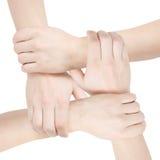 Verenigde handen Stock Foto