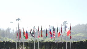 Verenigde vlaggen stock footage