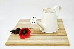 Vererans dag blomma- och flaskvatten Royaltyfri Foto