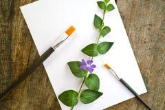 Verfborstels, bloem en Witboek Stock Foto's