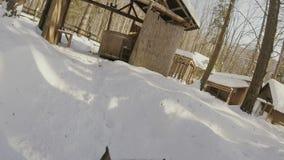 Verfolgen Sie Betrieb durch den Schnee im Winter mit Aktionskamera Gopro Haus im Wald stock footage