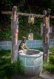 Verfolgen Sie das Schauen in einen Wasserbrunnen Stockfotografie