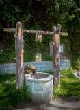 Verfolgen Sie das Schauen in einen Wasserbrunnen Stockbilder