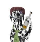 Verfolgen Sie den Säufer, der eine Zigarette und eine Flasche Alkohol hält Lizenzfreies Stockbild