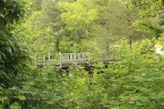 Verfolgen Sie Flecken USA - Brücke in den Ruinen - 2 Lizenzfreie Stockfotografie