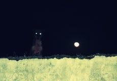 Verfolgen Sie mit glänzender Augennachtszene Stockbild
