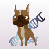 Verfolgen Sie und ihre DNA auf einem weißen Hintergrund stock abbildung