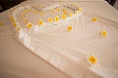 Verfraai bloem op het bed Royalty-vrije Stock Foto's