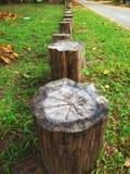 Verfraai strand met hout stock afbeeldingen