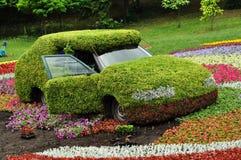 Verfraaide auto in het park Royalty-vrije Stock Afbeeldingen